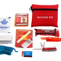 Survival Mini Kit