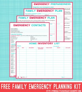FREE: Emergency Prepper Plans