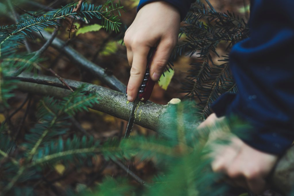 Lost in the wild: Survival skills that you can always depend on