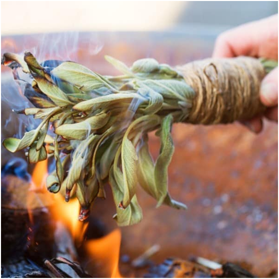 Camping Hack #14 Keep the Mosquitoes Away by Burning Sage