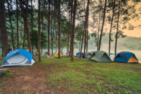 survival tent 1