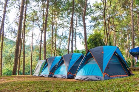 survival tent 2